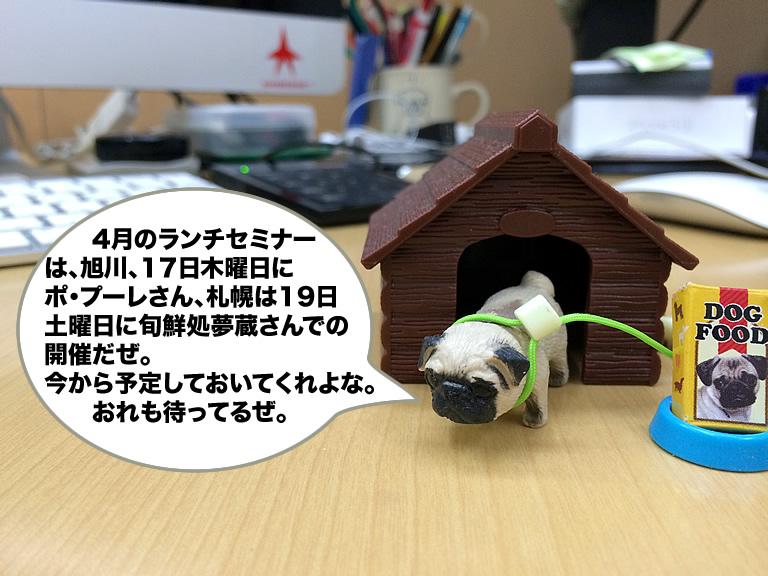 201404_520.jpg
